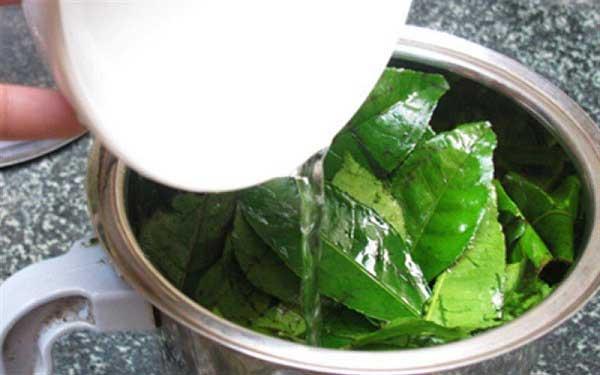 Đun nước trà xanh để tắm