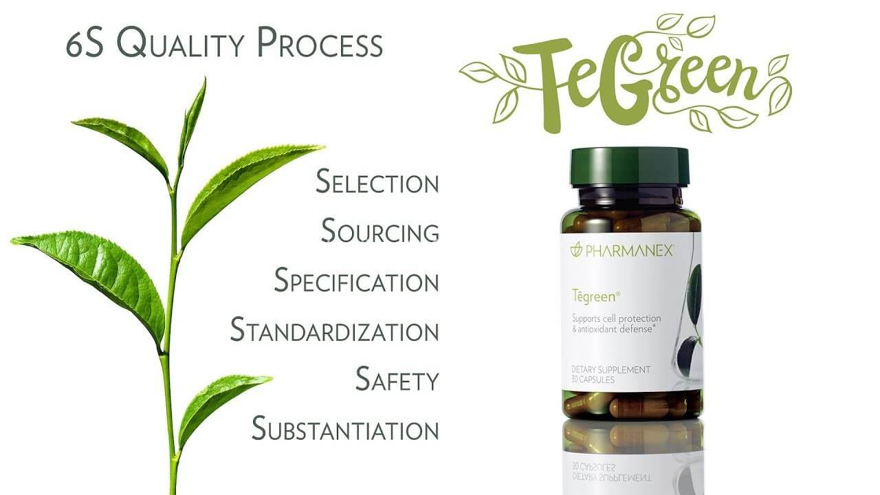 Thực phẩm chức năng Tegreen 97® (120 viên) 5