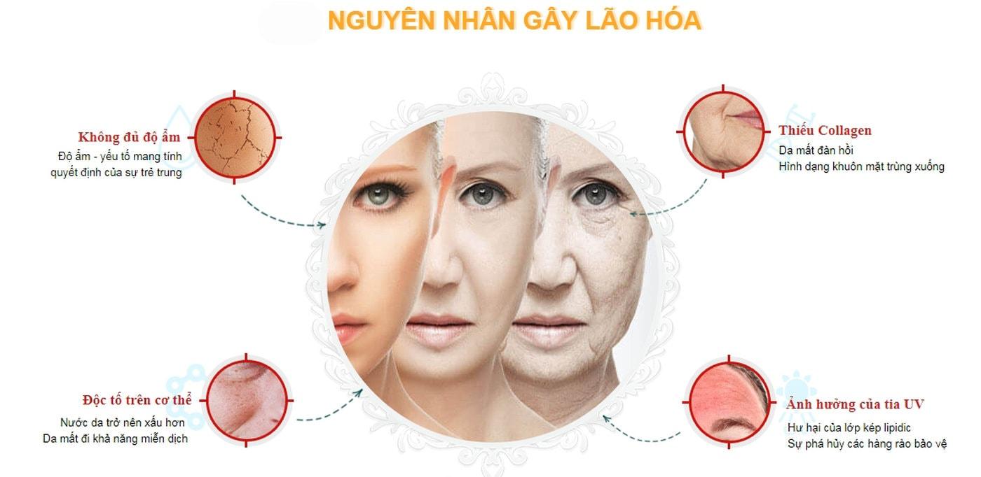 Có nhiều nguyên nhân gây nên lão hóa da